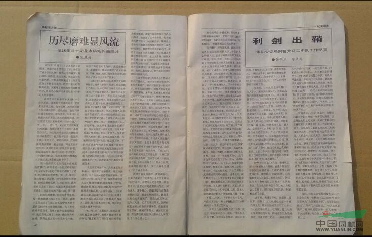 淮海日本专刊